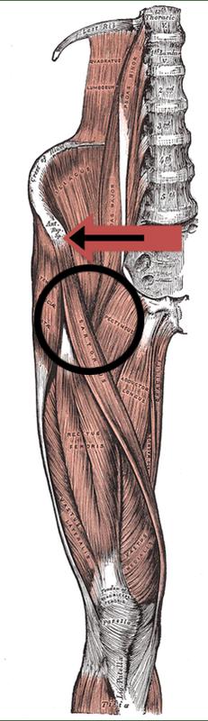 Hip Flexor Injury