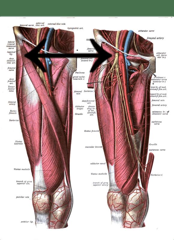 Chronic Hip flexor Pain