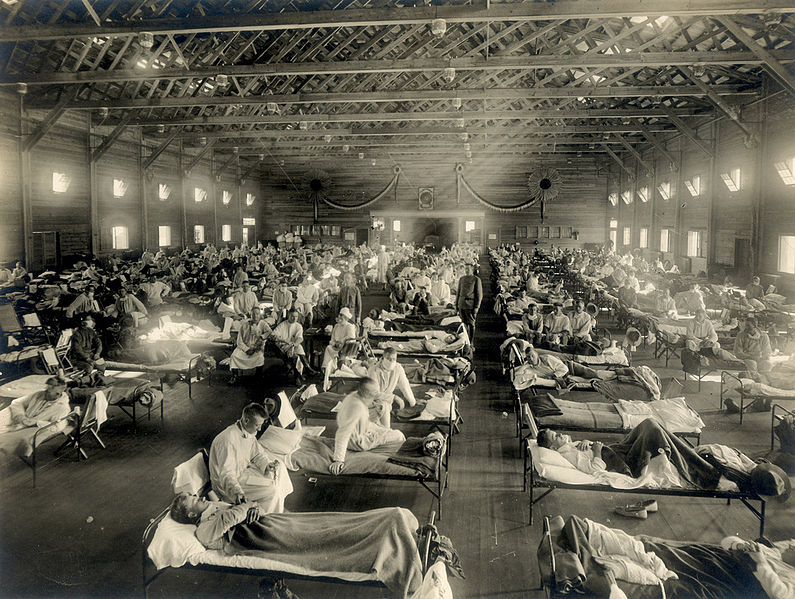 Cure Flu