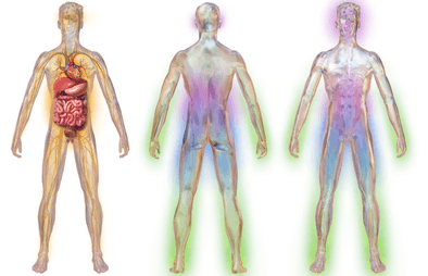 Neuropathy Adrenals