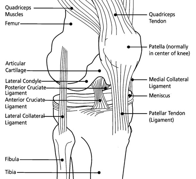 Patellar Tracking Syndrome