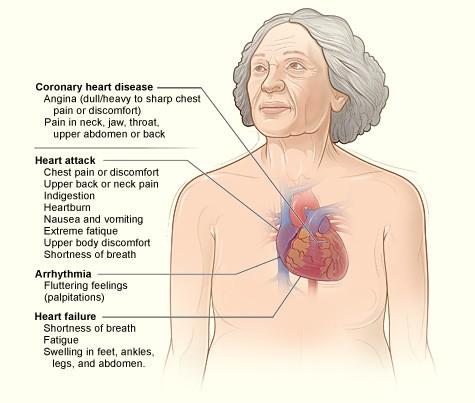 Statin Drug Dangers