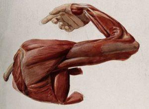 Chronic Severe Shoulder Pain Solved