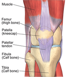 Patello-Femoral Syndrome