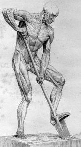 hip flexor pain