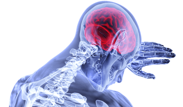 The Chronic Pain Diet