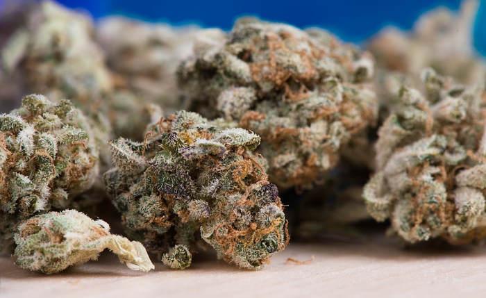 Generational Marijuana