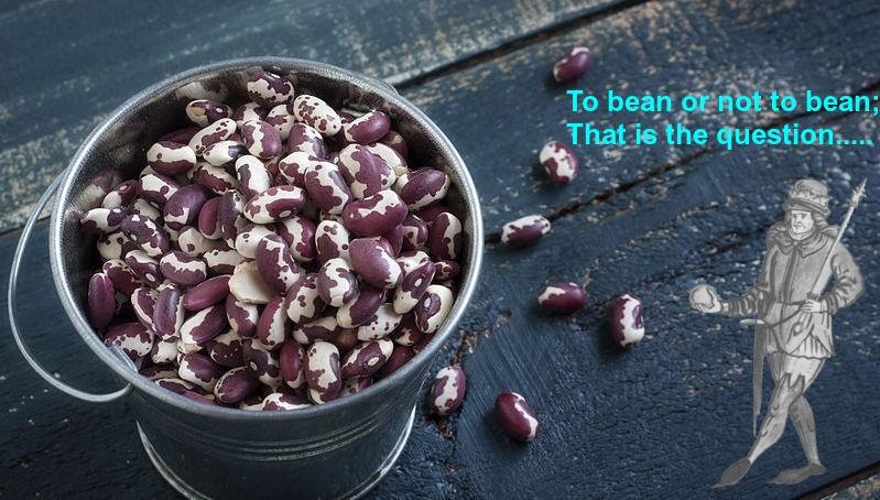Paleo Beans