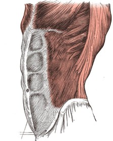 Fascia Chronic Pain