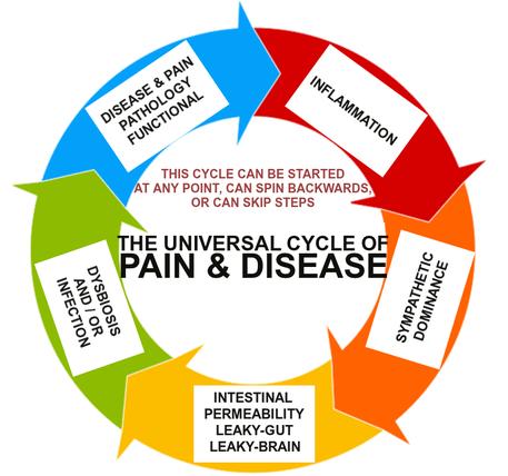 Universal Cycle of Pain & Disease