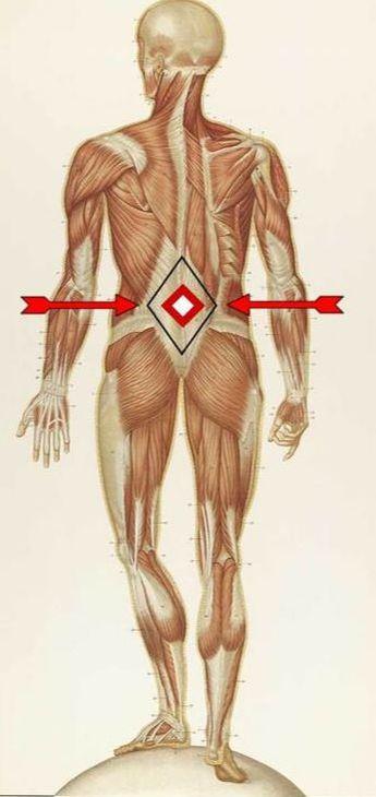 Thoracolumbar Fascia Pain