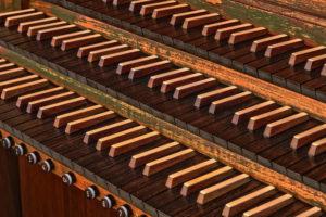 Interstitium as a New Organ in Fascia
